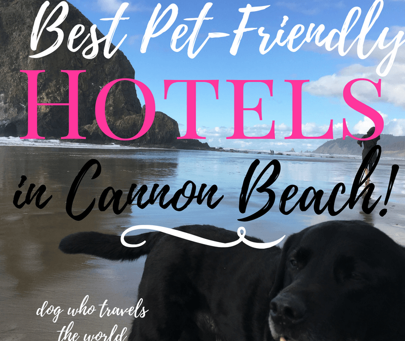 Best Pet-Friendly Hotels in Cannon Beach, Girl Who Travels the World