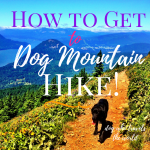 How to Get to Dog Mountain Hike, Girl Who Travels the World, Great Hikes in the Columbia Gorge