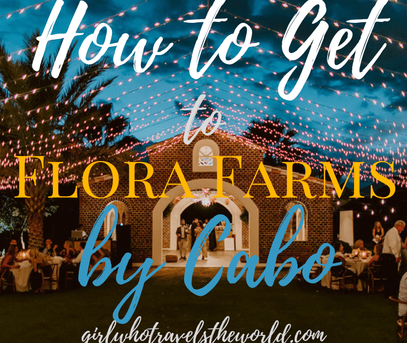 How to Get to Flora Farms in Cabo