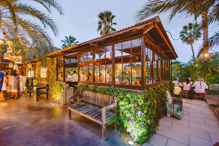 How to Get to Flora Farms in Cabo, Girl Who Travels the World
