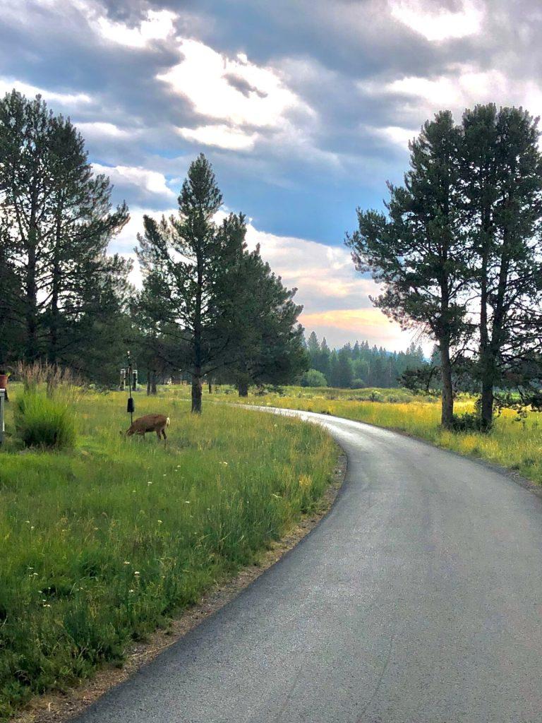 Best Paved Bike Trails in Sunriver, Oregon, Girl Who Travels the World