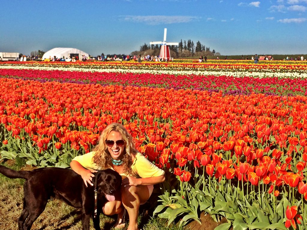 Where is Hannah The Bachelorette Standing in Tulips, Girl Who Travels the World