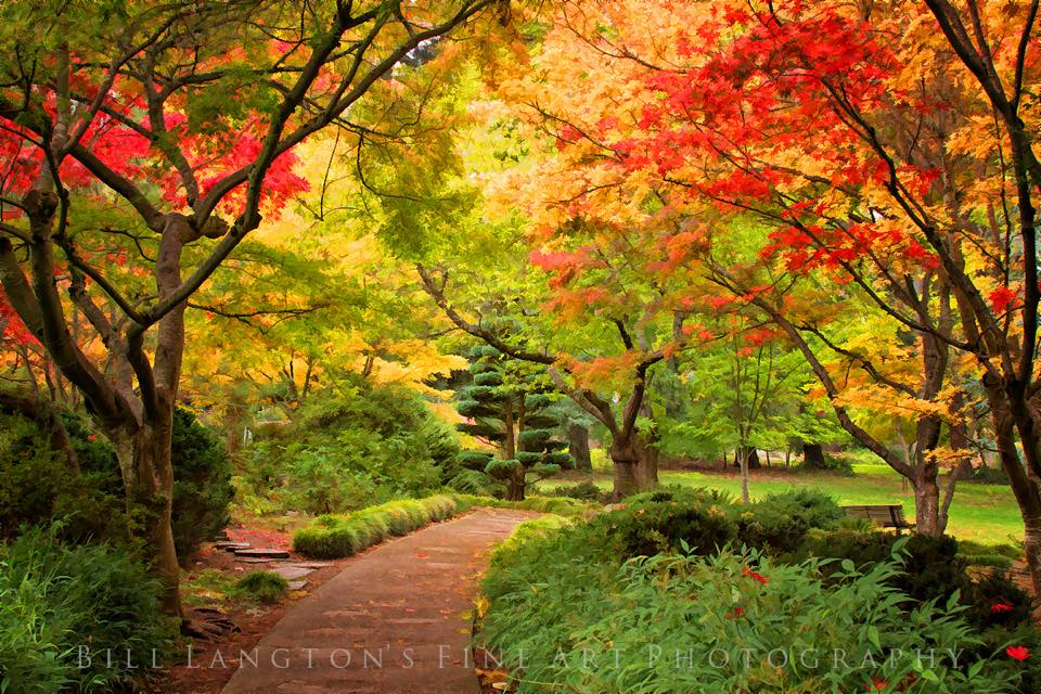 Where to Find Awesome Fall Color in Oregon, Girl Who Travels the World, Ashland