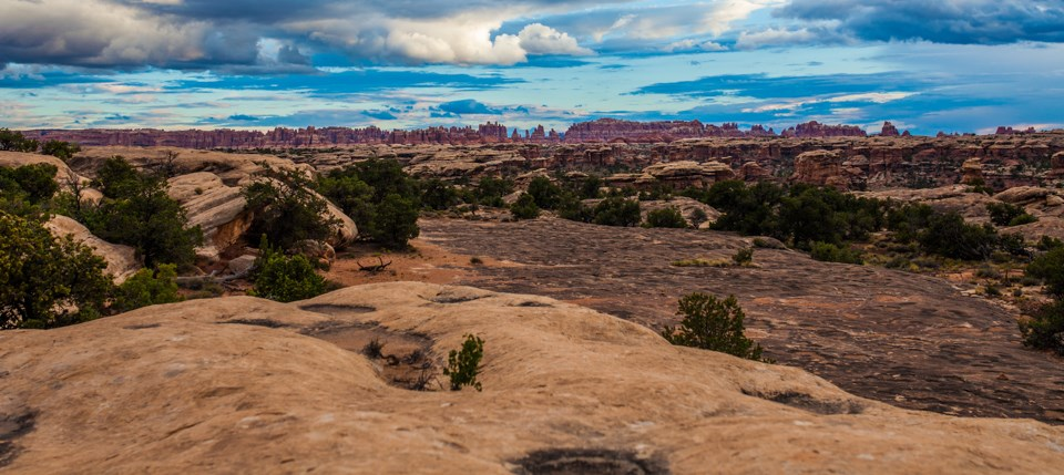 Best Easy Hikes at Canyonlands National Park, Girl Who Travels the World, Pothole Point Trail (Needles in Distance)