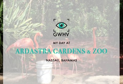 Day At Ardastra Gardens & Zoo