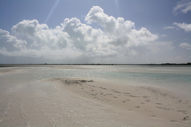 Bahamas Discovery Quest - Sandbar View