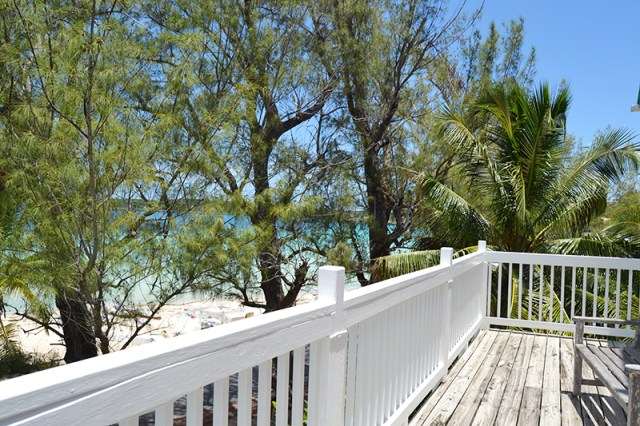 Balcony View - Haynes Library