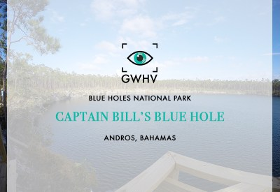 Captain Bill's Blue Hole - Andros