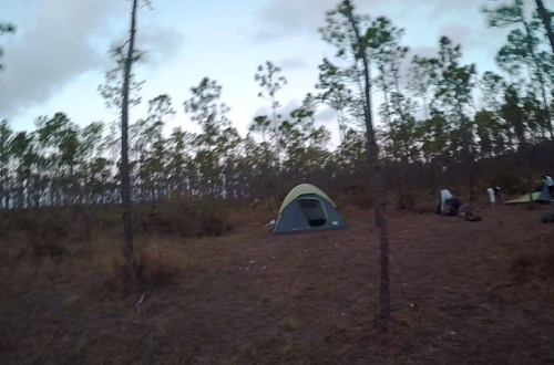 Andros - Camping-In-Andros---Tent