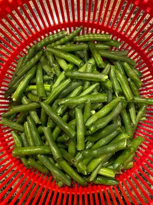cut green beans in a red basket