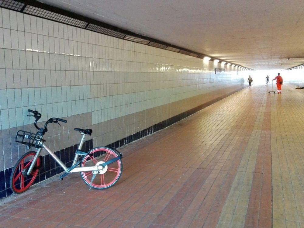Bicicletta Mobike, foto Fiorella Manini