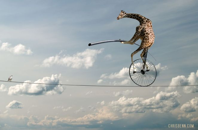 The Surreal Photoshop Zooscapes of Chris Benn - Design Mash