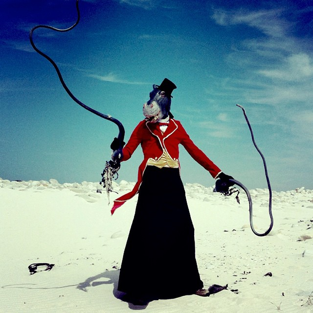 The Weird and Wonderful World of Mothmeister - Girly Design Blog