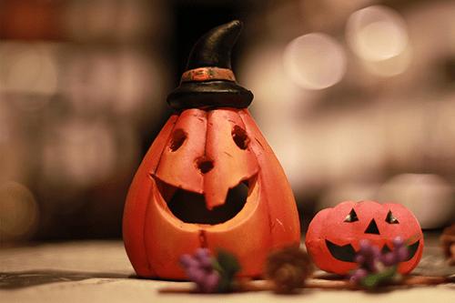 「カボチャ」「夜」「秋」などがテーマのフリー写真画像