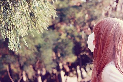 「公園」「植物」「花粉症」などがテーマのフリー写真画像