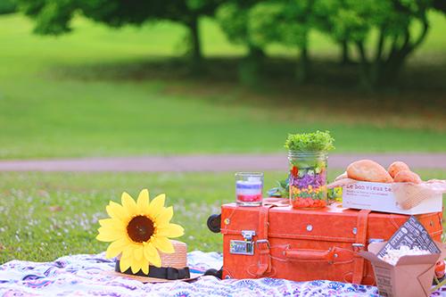 「ジャーサラダ」「スーツケース」「ピクニック」「ラウンドタオル」「帽子」「食べ物」などがテーマのフリー写真画像