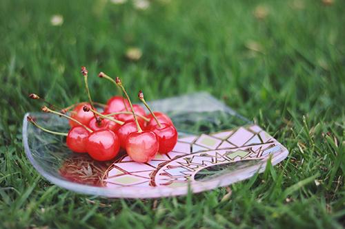 「サクランボ」「ピクニック」「フルーツ」「公園」「食器」などがテーマのフリー写真画像
