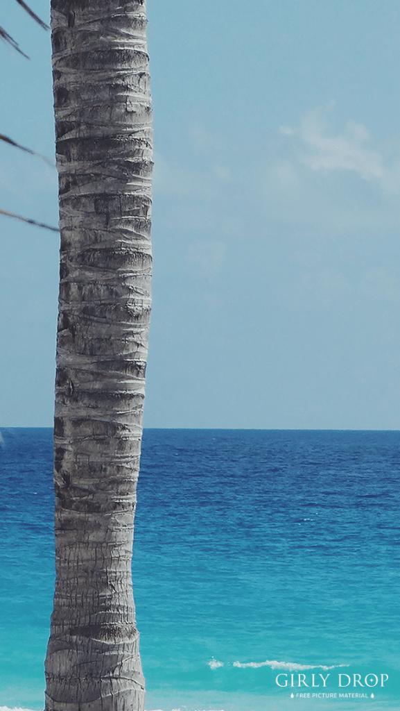 【オシャレなiPhone壁紙】目の前に広がるエメラルドグリーンの海とヤシの木