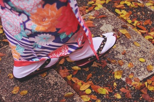 「オバケ」「カボチャ」「秋」などがテーマのフリー写真画像