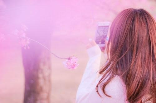 フリー写真素材:お花見でスマホを取り出し桜を撮影中の女の子
