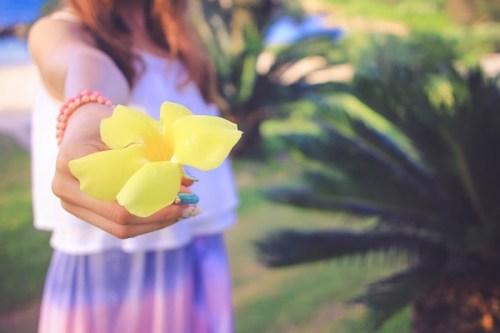 「オオバナアリアケカズラ」「ハイビスカス」「リゾート」「南国」「夏」「女性・女の子」「宮古島」「沖縄」「花」「離島」などがテーマのフリー写真画像