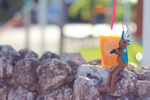 「boba」「イチゴ」「カフェ」「がりどろカフェ」「タピオカ」「デトックスウォーター」「ボトルドリンク」「飲み物」などがテーマのフリー写真画像