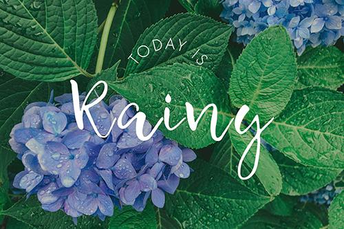 フリー写真素材:写真スタンプ:『Today is Rainy』