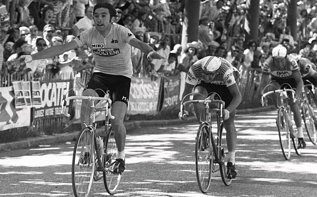 Il Merckx di Gregori, un romanzo a pedali
