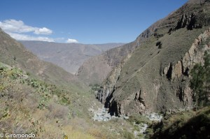 colca-1-of-1