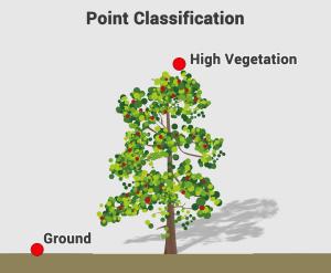 LiDAR Point Classification