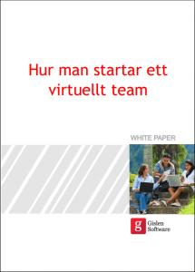 Virtuellt-team3
