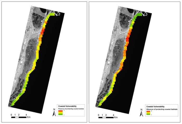 The coastline of Mexico's Yucatan peninsula is susceptible to wave erosion, but the coral reef and sea grass beds protect the coastline. The importance of this ecosystem service was assessed using wave energy and coastal erosion information. The Earth observation-derived data on benthic habitats and depths were compared to a scenario without these habitats. The map displays coastal vulnerability in the absence (right) and presence (left) of marine vegetation and coral reefs. Red marks high vulnerability and green low. Source: ESA/GeoVille