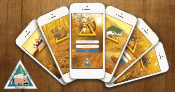 mobile-ecosystem1