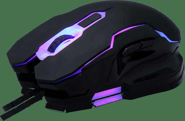 mouse-01-pro02