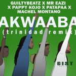 Machel Montano – Akwaaba Ft.Mr Eazi