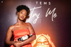 Tems Try Me Mp3 Download