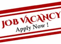 Rendeavour Graduate & Internship Job Recruitment (7 Positions)