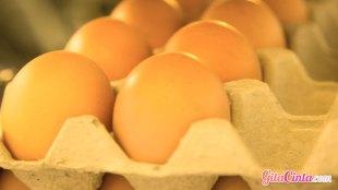 telur, rebus, sarapan, menu, sempurna, karton, kulkas, api, mentega, panci, hijau, meringues, veggies, mo, shu, taoge, kuning, putih, orak-arik, kandungan, kolin, vitamin, d, rendah, lemak, kolesterol, protein