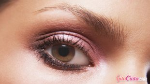 Beauty Eye Shadow