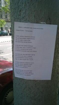 Szilágyi Enikő Demjénbe is vitt verset lámpaoszlopra