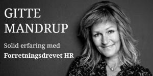 Hvad er Forretningsdrevet HR? Gitte Mandrup