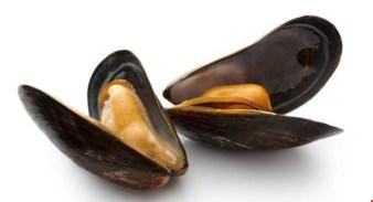 connemara-mussel-festival-28