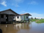 Typical houses of the Amazon.