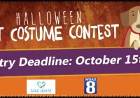 Halloween Pet Costume Contest