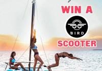 Hapari BIRD Scooter Giveaway