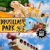 Win a Family Ticket to Drusillas Park E:30/07