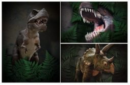 Win Tickets to the Dinosaur Encounter in The Lake District! E:20/08 – Family Clan Blog