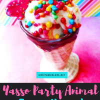 Party Hardy With A Yasso Frozen Yogurt Treat - Product Review of Party Animal Froyo