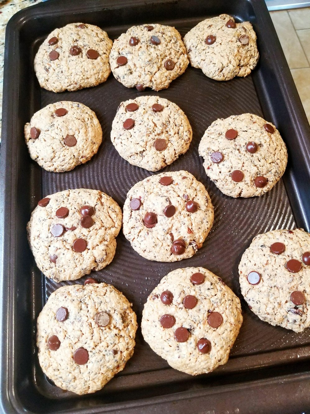 Gluten-Free Oatmeal, Raisin, Chocolate Chip, and Chia Cookies