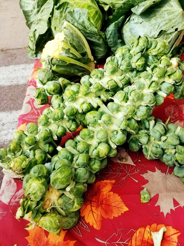 Jumbo stalks of Brussels sprouts at Eastern Market